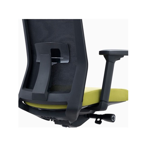 Lubar suppot with mesh backrest